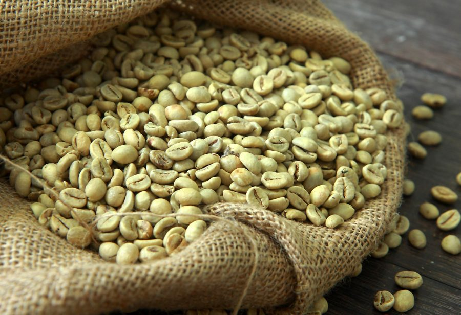 Ict Intercontinental Coffee Trading Best Wholesale Green