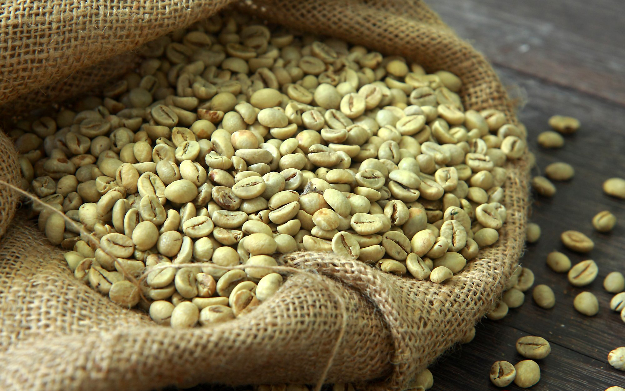 An Ultimate Guide For Buying The Best Green Coffee Beans Wholesale