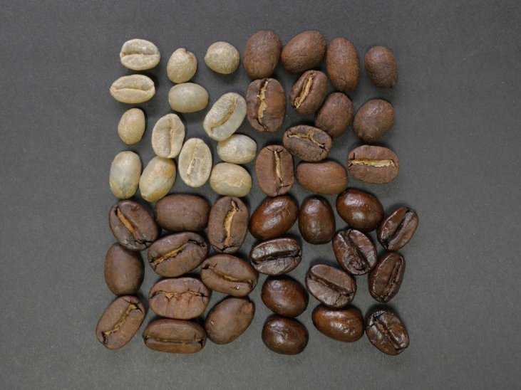 Best Light Roast Coffee 2019 Which Coffee Beans Make the Best Light Roast Coffee?