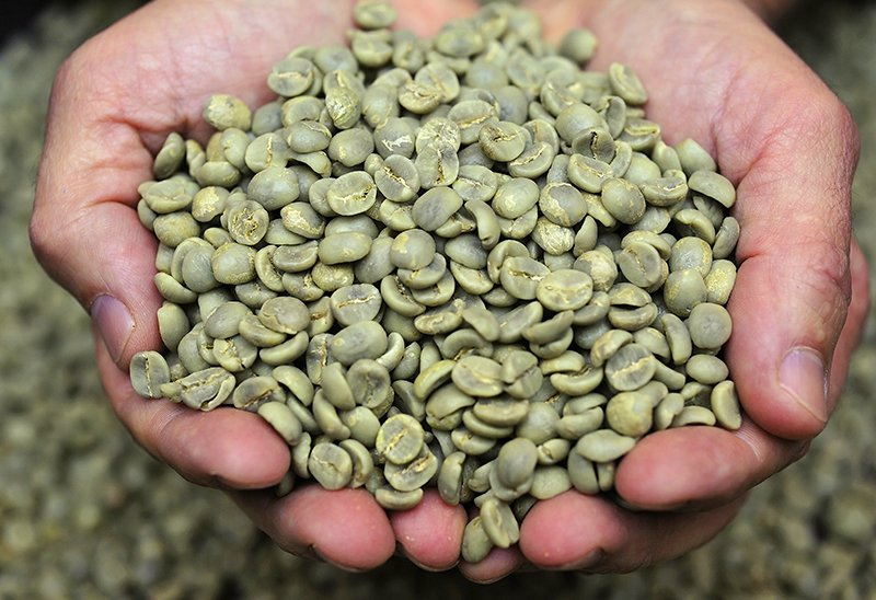 The Green Bean Difference Why Importers Buy Green Coffee Beans